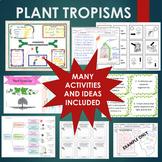Plant Tropisms BUNDLE - Gravitropism, Phototropism, Thigmotropism