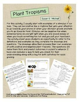 Plant Tropisms - Positive or Negative?