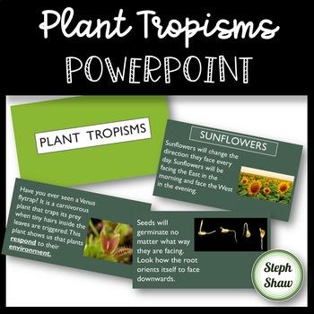 Plant Tropisms PowerPoint
