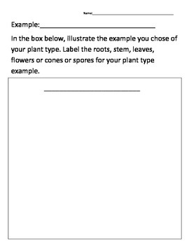 Plant Type Research Project