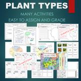 Plant Types BUNDLE - Moss, Ferns, Gymnosperm, Angiosperm, etc