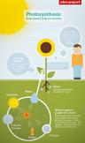 Plant Unit Activities