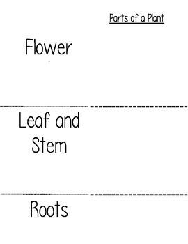 Plant Unit Activity