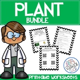 Plant Worksheets Bundle