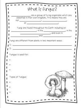 Plant Unit - Includes Power Point, Activities, & Printables!