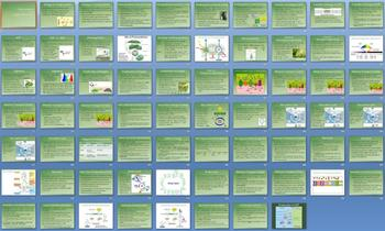 Plant Unit Lessons - 41 Files - PowerPoints, Outlines, Assessments
