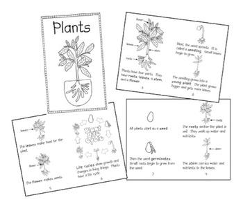 Plant Unit Materials