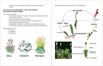 Plant Unit Notes, Botany Curriculum and Standards