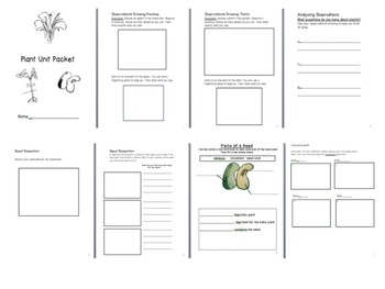 Plant Unit-Packet and Lessons