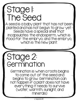 Plant Unit {Parts of a Plant- Parts of a Seed- Plant Life Cycle- Plant Needs}