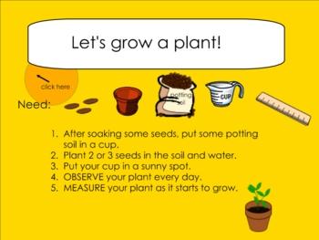 Plant Unit Smartboard Lesson
