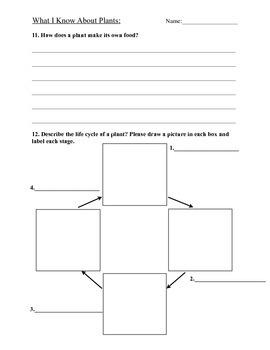 Plant Unit Test Grade 1-2