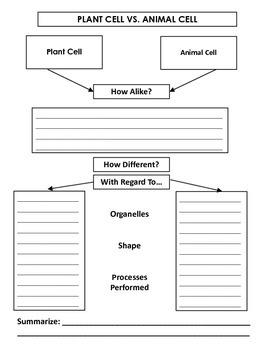 Plant VS Animal Cell Venn Diagrams