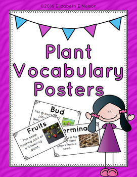 Plant Vocabulary Posters
