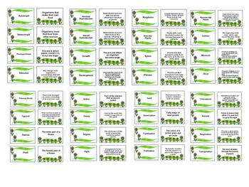 Plant Vocabulary Review Flash Cards