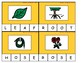 Plant Vocabulary Spell, Read and Write