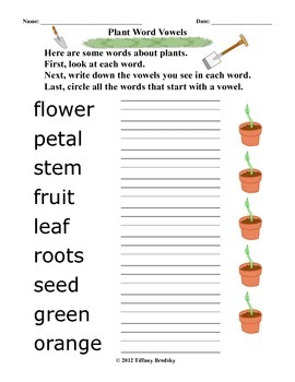 Plant Vocabulary and Vowel Connection