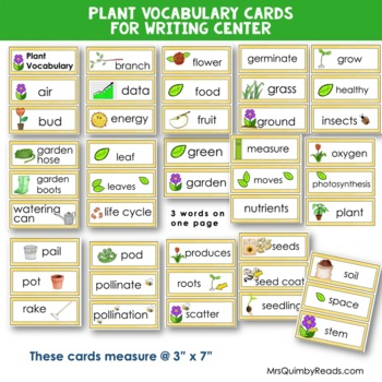 Plant Vocabulary Word Cards | Writing Center | Bulletin Board