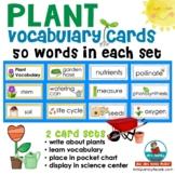 Plant Vocabulary Word Cards | Science Center | Bulletin Bo