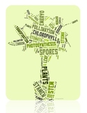 Plant Vocabulary image for Classroom Decoration Poster or Sign