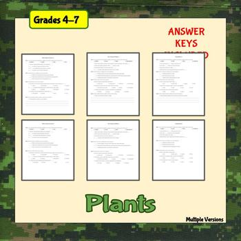 Plant Basics Worksheets