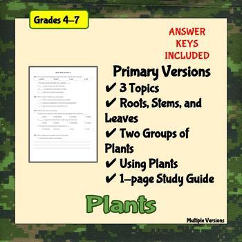 Plant Basics Worksheets