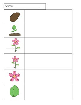 Plant Write the Room