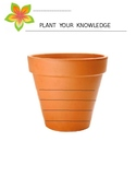 Plant Your Knowledge