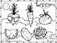Plant a Garden Learning Alphabet  Aa Thru Zz BUNDLE