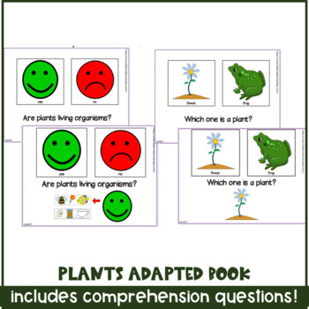 Plant adapted / interactive book for special needs