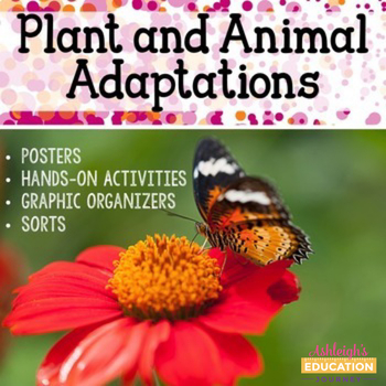 Plant and Animal Adaptations - Activities, Graphic Organizers, and Sorts