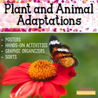 Plant and Animal Adaptations - Activities, Graphic Organiz