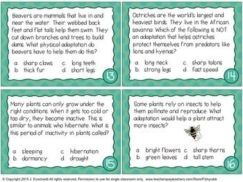 Plant and Animal Adaptations Task Cards