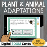 Plant and Animal Adaptations SELF-CHECKING Digital Task Cards BOOM CARDS Science