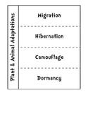 Plant and Animal Adaptations Flap Book Hibernation Migrati