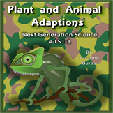 Plant and Animal Adaptations: Next Generation Science 4-LS1-1