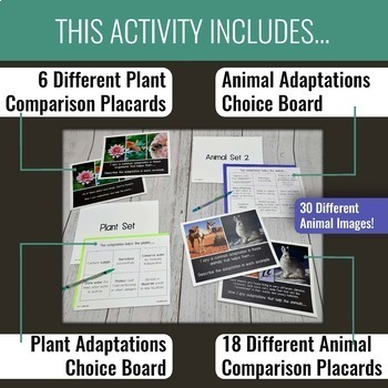 Comparing Adaptations I Spy Activity (STAAR Review Aligned)