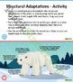Plant and Animal Adaptations Unit Plan