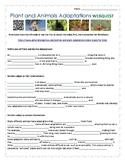 Plant and Animal Adaptations WebQuest