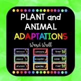 Plant and Animal Adaptations Word Wall