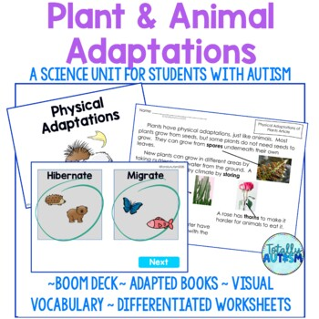 Plant and Animal Adaptations- camouflage, mimicry (special education)