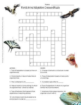 Plant and Animal Adaptations for Survival Crossword Puzzle