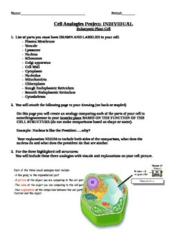 Plant and Animal Cell Analogies Project