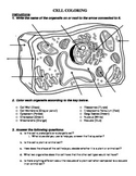 Plant and Animal Cell Coloring with Analysis Questions