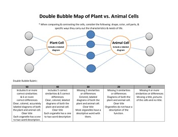 Plant and Animal Cell Double Bubble Mind Map