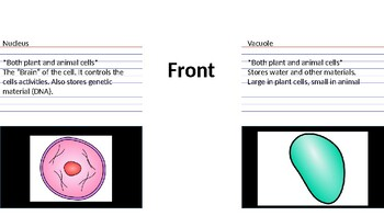 Plant and Animal Cell Flashcards Warm ups