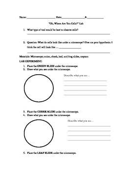 Plant and Animal Cell Lab Sheet