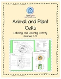 Plant and Animal Cell Labeling Activity