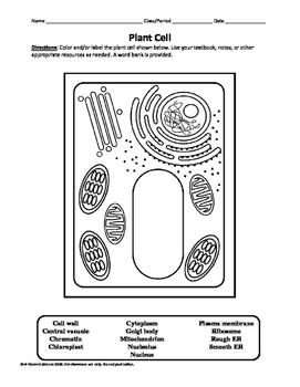 Plant and animal cell labeling diagrams by a thom ic science tpt plant and animal cell labeling diagrams ccuart Images