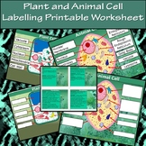 Plant and Animal Cell Labelling Printable Worksheet